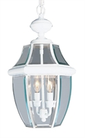 Picture for category Livex 2255-03 Monterey Outdoor Pendant 11in White 2-light