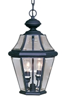 Picture for category Livex 2265-04 Georgetown Outdoor Pendant 10in Black 2-light