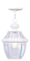 Picture for category Livex 2152-03 Monterey Outdoor Pendant 9in White 1-light