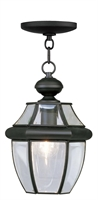 Picture for category Livex 2152-04 Monterey Outdoor Pendant 9in Black 1-light