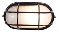Picture for category Access 20290-BL/FST Nauticus Outdoor Flush Mount