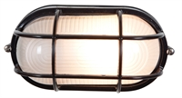Picture for category Access 20292-BL/FST Nauticus Outdoor Flush Mount