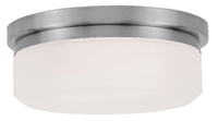 Picture for category Livex Lighting 7390-91 Flush Mounts 8in Brushed Nickel Steel 2-light