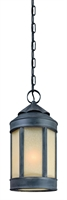 Picture for category Troy F1468AI Pendant Andersons Forge Aged Iron Hand Forged Iron 1 Light 9 inch