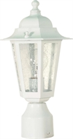 Picture for category Nuvo 60/994 Cornerstone Outdoor Lighting Lamps 7in White Clear Seed 1-light
