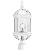 Picture for category Nuvo 60/4974 Boxwood Outdoor Lighting Lamps 8in White Aluminum Clear Beveled