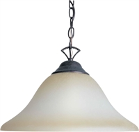 Picture for category Forte 2042-01-27 Forte Lighting Pendant Lanterns 16in Steel 1-light