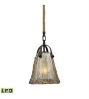 Picture for category Pendants 1 Light LED With Oil Rubbed Bronze Finish Antique Mercury Glass Medium Base 7 inch 9.5 Watts - World of Lamp