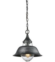 Picture for category Pendants 1 Light With Silvered Graphite Finish Seedy Medium Base 12 inch 100 Watts - World of Lamp
