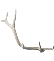 Picture for category Dimond Home 225025 Decor Cream Resin Elk Antler