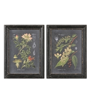 Picture for category World of Decor RL-128756 Decor Distressed Black Mdf Midnight Botanicals