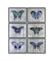 Picture for category World of Decor RL-147279 Decor Satin Black Mdf Vibrant Butterflies