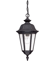 "Picture for category Outdoor Pendant 1 Light Fixtures With Satin Iron ore Finish Aluminum Die-casting Material Medium Bulb 9"" 100 Watts"