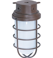 "Picture for category Outdoor Wall Sconces 1 Light Fixtures With Old Bronze Tone Finish Medium Bulb 6"" 200 Watts"