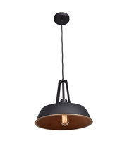 Picture for category Pendants 1 Light With Matte Black Tones Finish and Metal Material 11 inch 60 Watts