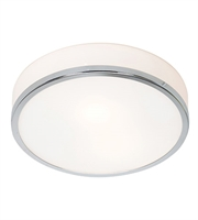 Picture for category Flush Mounts 1 Light With Chrome Tones Finish and Steel Material 4 inch 75 Watts