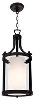 Picture for category Pendants 1 Light With Graphite Tone Finished Medium Base Bulbs 23 inch 100 Watts