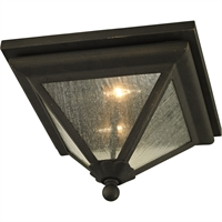 Picture for category Troy Lighting C6470 Flush Mounts Vintage Bronze Hand-Worked Iron / Glass Genea