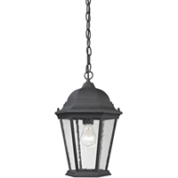 Picture for category Thomas Lighting 8101EH/65 Outdoor Pendant Matte Textured Black Metal,Glass Temple Hill