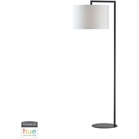 Picture for category Dimond Lighting D2729-HUE-B Floor Lamps Matte Black Metal Bronze Stem