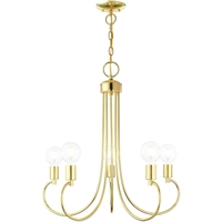 Picture for category Livex Lighting 42925-02 Chandeliers Polished Brass Steel 5-light